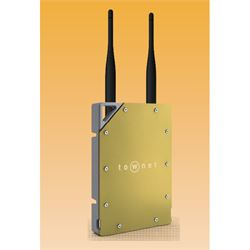 Townet 300-40-HS punto accesso WLAN Oro